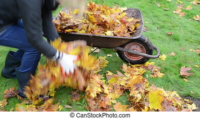 woman load barrow leaves - blond worker woman hands in...