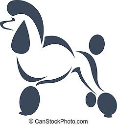 Vector image of an dog poodle on white background