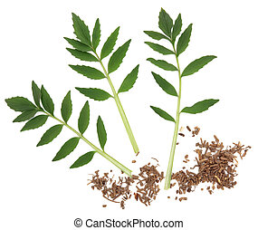 Valerian Herb - Valerian chopped herb root and leaf sprigs...