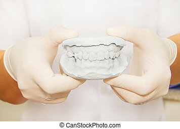 Dental  gypsum model plaster with dentist  hand grapping