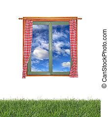 Window and grass