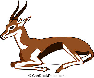 resting Thompson's Gazelle - vector illustration of a...