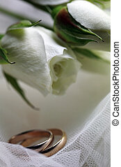 Wedding rings on a background of white flowers