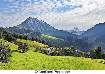 Green alpine meadow on a hillside - Swiss Alps. Green alpine...
