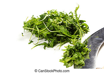 rucola on a white background