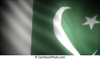 Flag of Pakistan seamless
