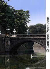 Japanese bridge with swan - A lovely swan swims peacefully...