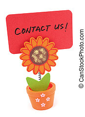 Contact us words written on red paper of sun flower pot clip