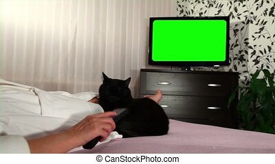 Woman watches green screened TV - Woman watches television...