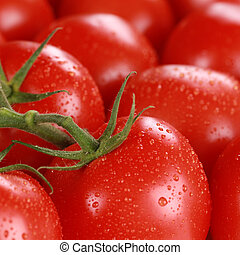 Macro shot of fresh tomatoes with water drops