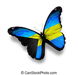 Bahamian flag butterfly, isolated on white