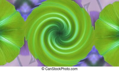 morning glory deformation rotation swirl pattern in lush...