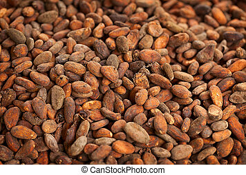 Cocoa beans background - Ripe orange cocoa beans background