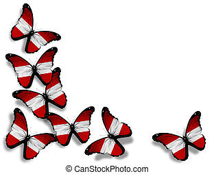 Austrian flag butterflies, isolated on white background