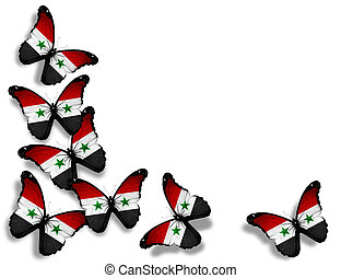 Syrian flag butterflies, isolated on white background