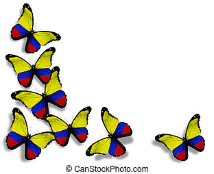 Colombian flag butterflies, isolated on white background