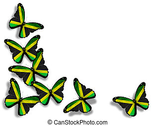 Jamaican flag butterflies, isolated on white background