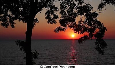 Lake Michigan Sunset Silhouette - Loop features a beautiful...
