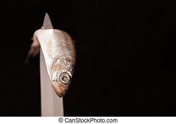 dead small fish contorted on knife - dead small fish...