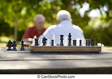Active retired people, two old friends playing chess at park...