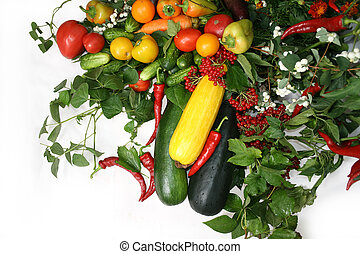 Vegetable still life - Full frame of a broad variety of...