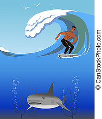 Surfer and shark.
