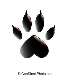 Paw with claws on white background