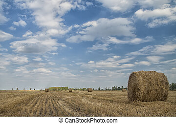 Rural Landscape with haybales on a summers day