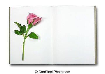 rose on note book, isolate