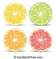 Citrus Fruits - citrus fruits: orange, lime, grapefruit and...