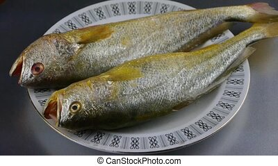 Delicious Croaker fish