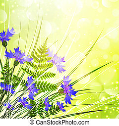 Cornflower Bouquet With Fern Over Sunny Bright Background