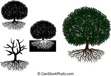 Big tree with roots for any nature or ecology design