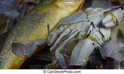 Delicious crab and Croaker Pomfret fish,within dial...