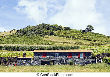 Beautiful farmhouse in Pico island, Azores