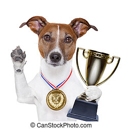 winner dog  - champion winning dog with a gold medal