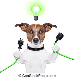eco dog - green energy dog with a cable and a light bulb