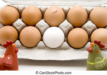 Fresh eggs in the egg carton