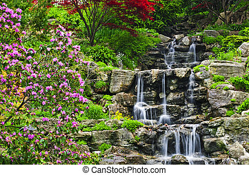 Cascading waterfall in japanese garden in springtime