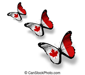 Three Canadian flag butterflies, isolated on white
