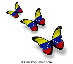 Three Venezuelan flag butterflies, isolated on white