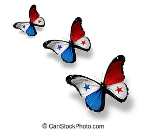 Three Panamanian flag butterflies, isolated on white