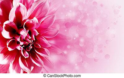 bonito, loto, flor, fundos, seu, desenho