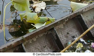 rubbish Garbage in Iron boat,Vast lotus pool,Fisherman clean...