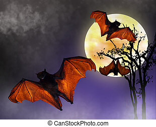 Halloween Night Bats - Image and Illustration composition of...