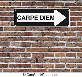 Carpe Diem - A conceptual road sign on opportunity (mounted...
