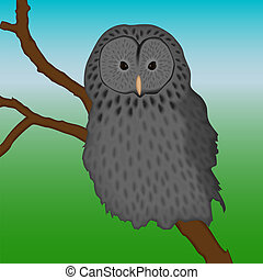 ural owl sitting on a branch