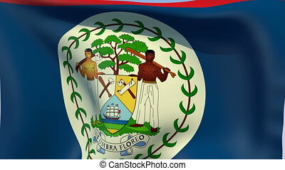 Flag of Belize - Flags of the world collection
