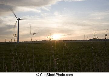 windfarm silhouette at dusk.