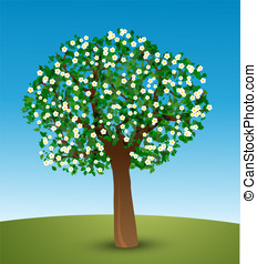 Tree with green leaves and white flowers - Spring tree...